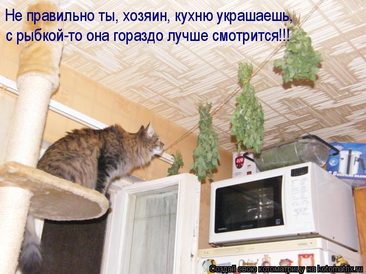 Котоматрица: Не правильно ты, хозяин, кухню украшаешь, с рыбкой-то она гораздо лучше смотрится!!!