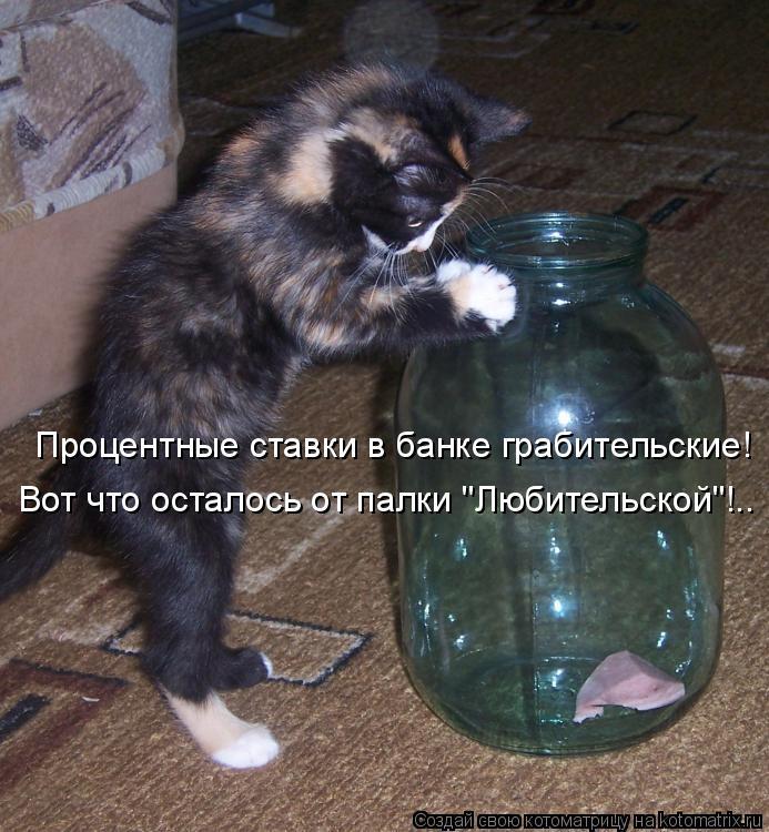 """Котоматрица: Процентные ставки в банке грабительские! Вот что осталось от палки """"Любительской""""!.."""