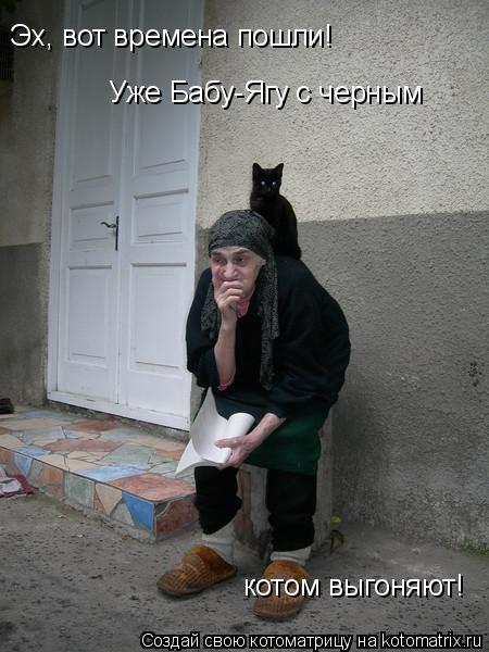 Котоматрица: Эх, вот времена пошли! Уже Бабу-Ягу с черным  котом выгоняют!
