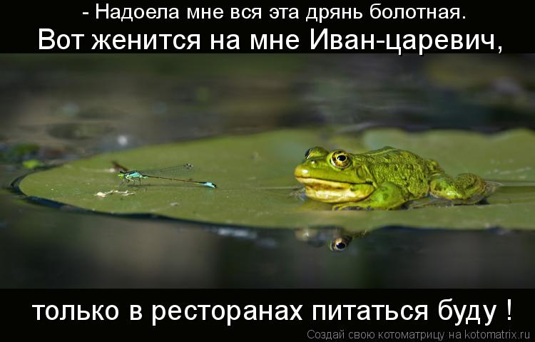 Котоматрица: - Надоела мне вся эта дрянь болотная. Вот женится на мне Иван-царевич,  только в ресторанах питаться буду !