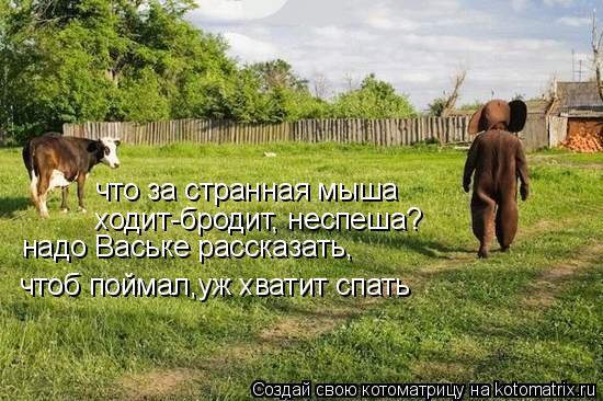 Котоматрица: что за странная мыша ходит-бродит, неспеша? надо Ваське рассказать, чтоб поймал,уж хватит спать