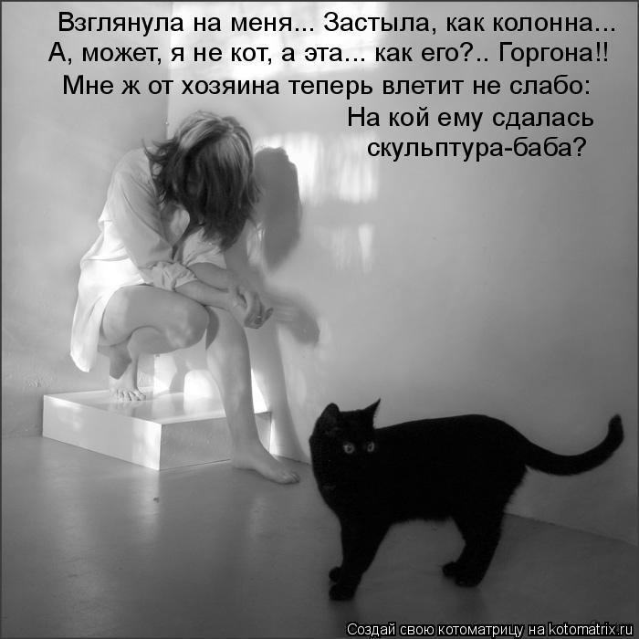 Котоматрица: Взглянула на меня... Застыла, как колонна... А, может, я не кот, а эта... как его?.. Горгона!! Мне ж от хозяина теперь влетит не слабо: На кой ему сда