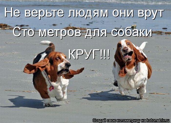 Котоматрица: Не верьте людям они врут Сто метров для собаки  КРУГ!!!