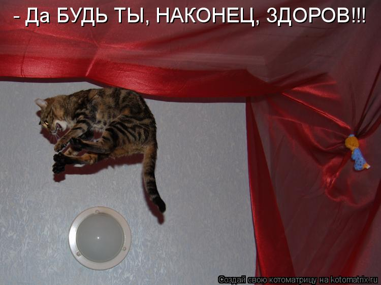 Котоматрица: - Да БУДЬ ТЫ, НАКОНЕЦ, ЗДОРОВ!!!