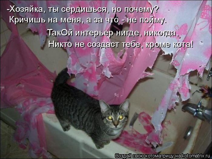 Котоматрица: -Хозяйка, ты сердишься, но почему? Кричишь на меня, а за что - не пойму. ТакОй интерьер нигде, никогда, Никто не создаст тебе, кроме кота!