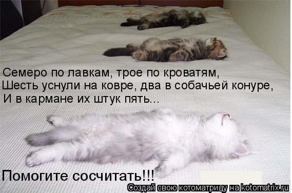 Котоматрица: Семеро по лавкам, трое по кроватям, Шесть уснули на ковре, два в собачьей конуре, И в кармане их штук пять... Помогите сосчитать!!!