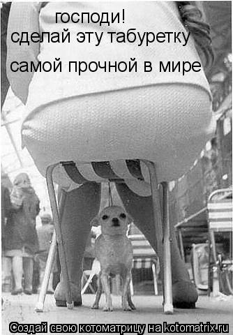 Котоматрица: господи! сделай эту табуретку самой прочной в мире