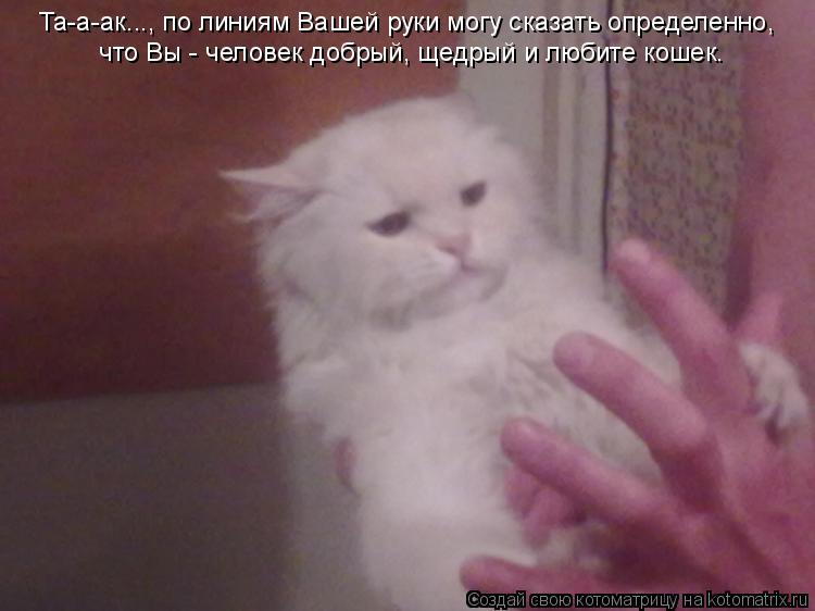 Котоматрица: Та-а-ак..., по линиям Вашей руки могу сказать определенно,  что Вы - человек добрый, щедрый и любите кошек.