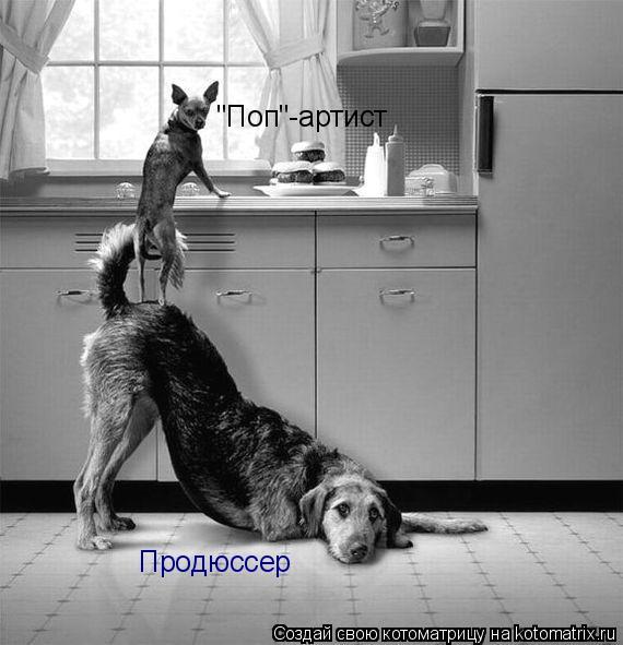 "Котоматрица: Продюссер ""Поп""-артист"