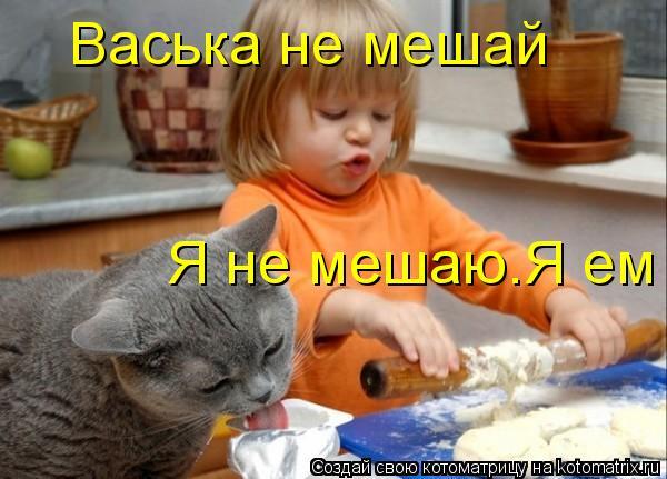 Котоматрица: Васька не мешай Я не мешаю.Я ем