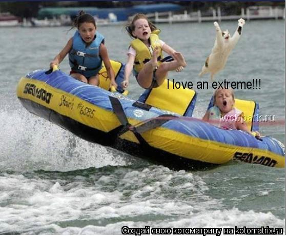 Котоматрица: I love an extreme!!!