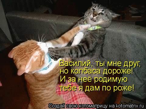 Котоматрица: Василий, ты мне друг, но колбаса дороже! тебе я дам по роже! И за неё родимую
