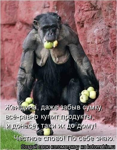 Котоматрица - Женщина, даже забыв сумку, всё-равно купит продукты, и донесёт таки их