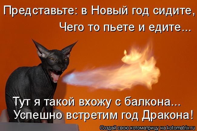Котоматрица - Успешно встретим год Дракона! Представьте: в Новый год сидите,  Тут я