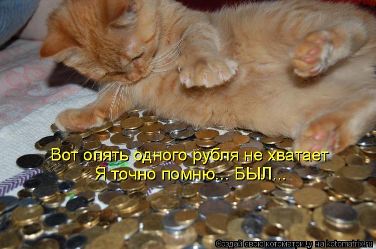 Котоматрица: Я точно помню... БЫЛ... Вот опять одного рубля не хватает