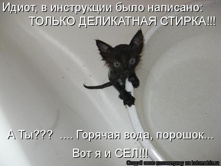Котоматрица: Идиот, в инструкции было написано: ТОЛЬКО ДЕЛИКАТНАЯ СТИРКА!!! А Ты???  .... Горячая вода, порошок... Вот я и СЕЛ!!!