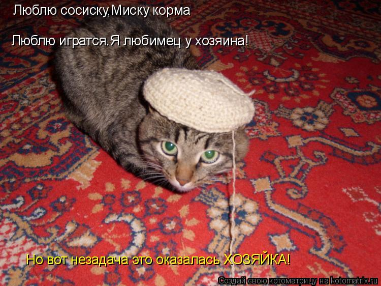 Котоматрица: Люблю сосиску,Миску корма Люблю игратся.Я любимец у хозяина! Но вот незадача это оказалась ХОЗЯЙКА!