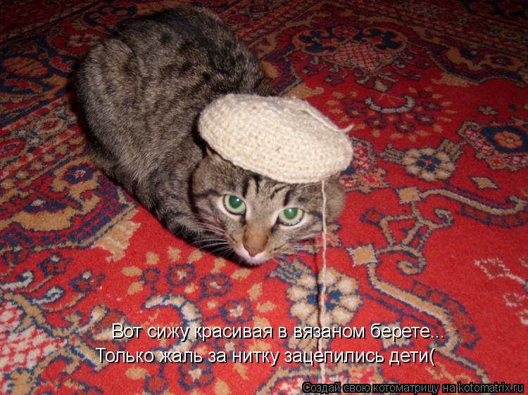 Котоматрица: Вот сижу красивая в вязаном берете... Только жаль за нитку зацепились дети(
