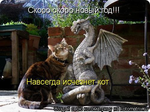 Котоматрица: Скоро скоро новый год!!! Навсегда исчезнет кот