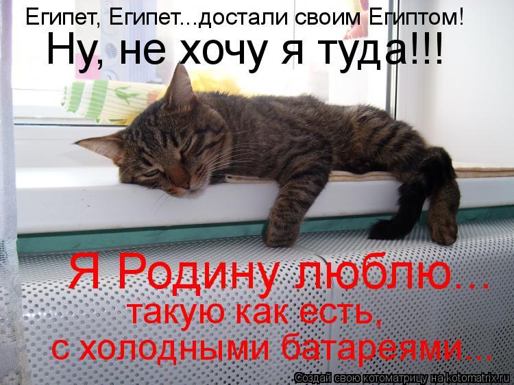 Котоматрица: Египет, Египет...достали своим Египтом! Ну, не хочу я туда!!! Я Родину люблю... такую как есть,  с холодными батареями...