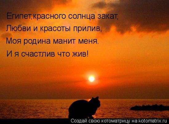 Котоматрица: Египет,красного солнца закат, Любви и красоты прилив, Моя родина манит меня. И я счастлив что жив!