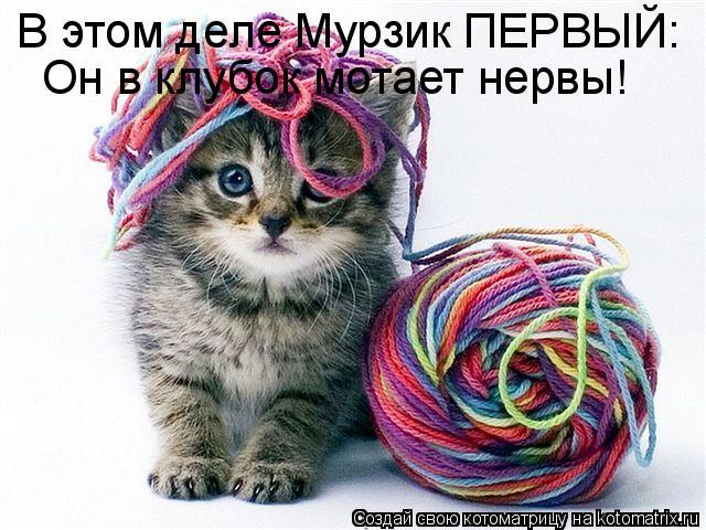Котоматрица: В этом деле Мурзик ПЕРВЫЙ: Он в клубок мотает нервы!