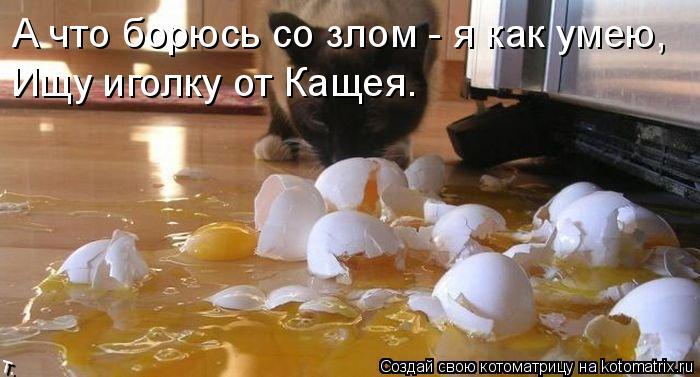 Котоматрица: А что борюсь со злом - я как умею, Ищу иголку от Кащея.
