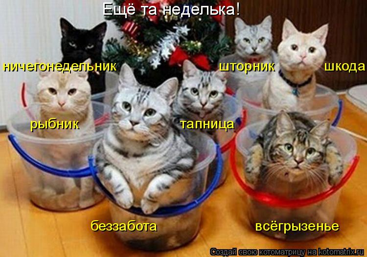 Котоматриця!)))) - Страница 9 1052598