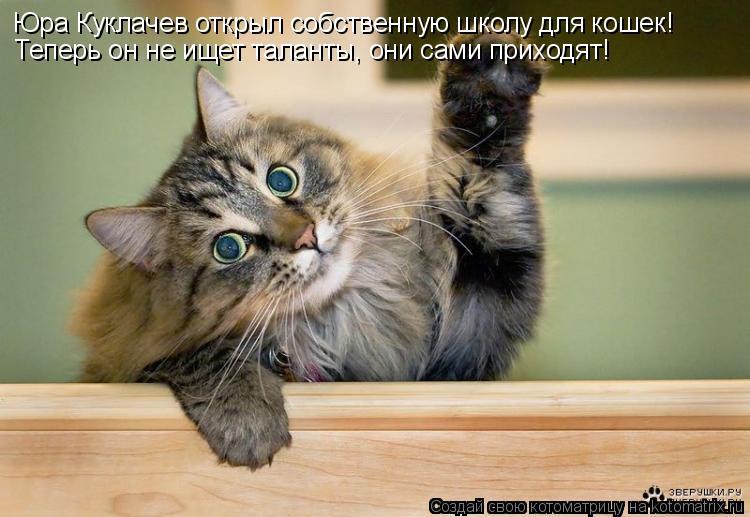 Котоматрица: Юра Куклачев открыл собственную школу для кошек! Теперь он не ищет таланты, они сами приходят!