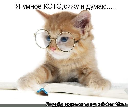 Котоматрица: Я-умное КОТЭ,сижу и думаю.....
