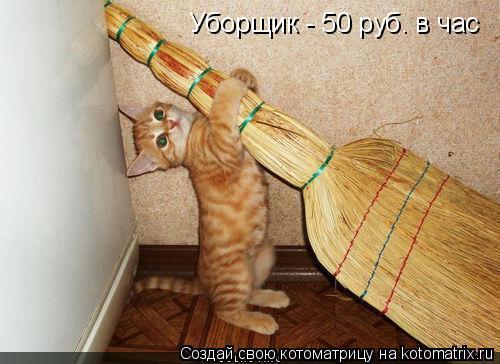 Котоматрица: Уборщик - 50 руб. в час