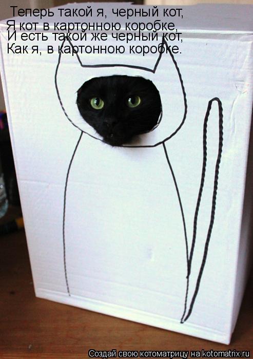 Котоматрица: Теперь такой я, черный кот, Я кот в картонною коробке, И есть такой же черный кот, Как я, в картонною коробке.