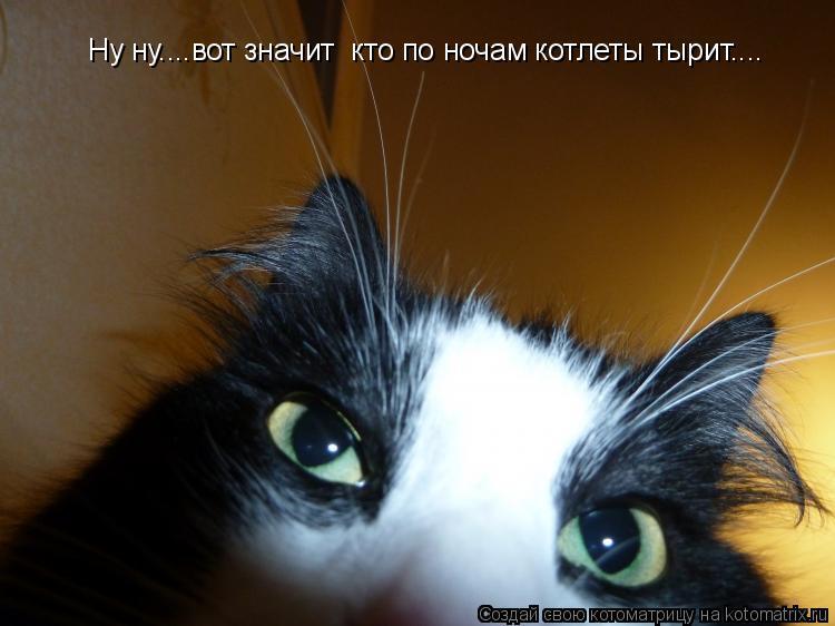 Котоматрица: Ну ну....вот значит  кто по ночам котлеты тырит.... Ну ну....вот значит  кто по ночам котлеты тырит....