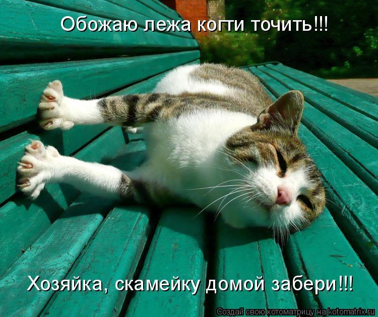 Котоматрица: Обожаю лежа когти точить!!! Хозяйка, скамейку домой забери!!!