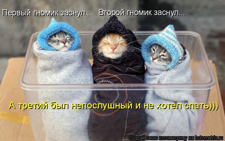Котоматрица: Первый гномик заснул... Второй гномик заснул... А третий был непослушный и не хотел спать)))