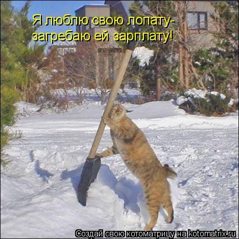 Котоматрица: Я люблю свою лопату- загребаю ей зарплату!