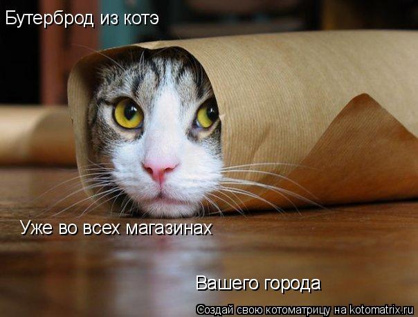 Котоматрица: Бутерброд из котэ Уже во всех магазинах Вашего города Вашего города