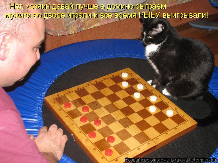 Котоматрица: Нет, хозяин давай лучше в домино сыграем мужики во дворе играли и все время РЫБУ выигрывали!