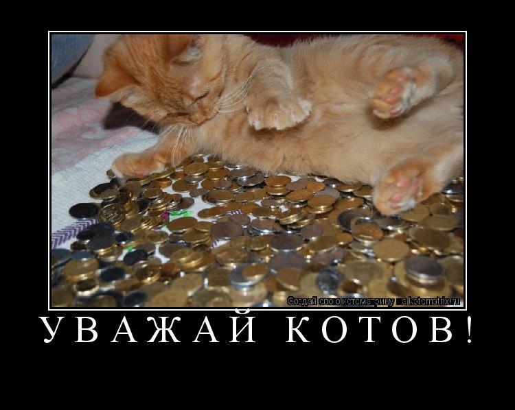 Котоматрица: Уважай котов!
