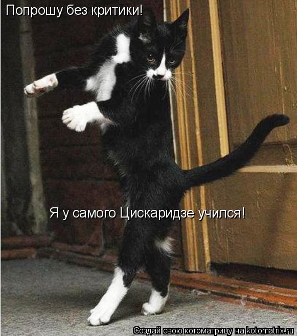 Котоматрица: Попрошу без критики! Я у самого Цискаридзе учился!