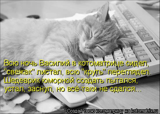 """Котоматрица: Всю ночь Василий в котоматрице сидел, """"свежак"""" листал, всю """"круть"""" переглядел. Шедеврик юморной создать пытался, устал, заснул, но всё-таки не"""