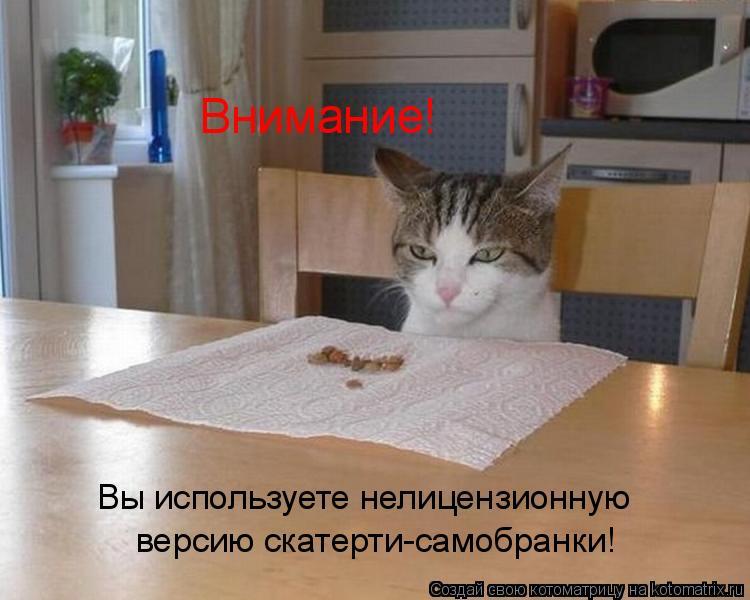 Котоматриця!)))) - Страница 9 1053683