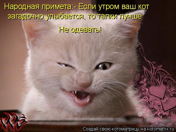 Котоматрица: Народная примета:- Если утром ваш кот   загадочно улыбается, то тапки лучше Не одевать!