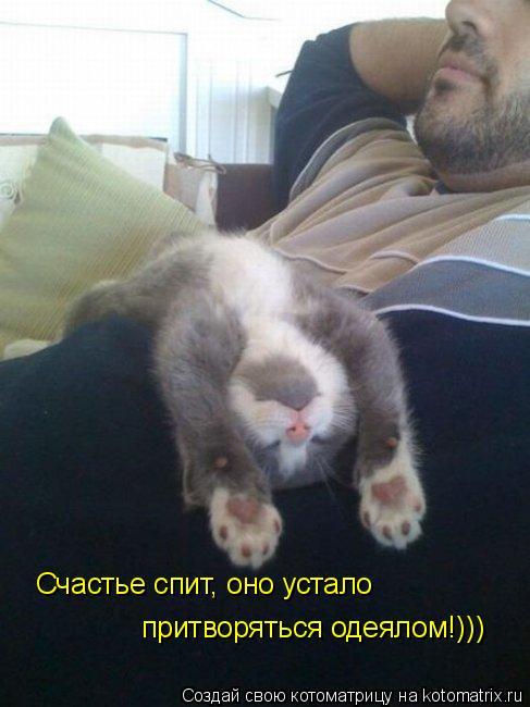 Котоматрица: Счастье спит, оно устало притворяться одеялом!)))
