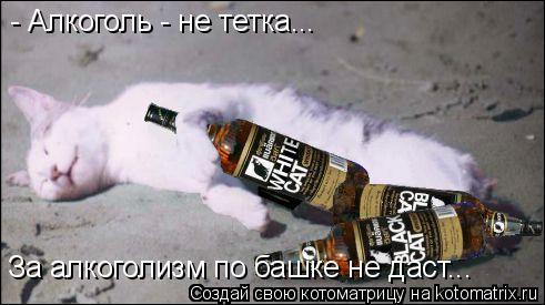 Котоматрица: - Алкоголь - не тетка... За алкоголизм по башке не даст...