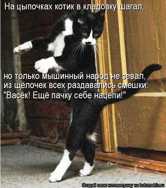 """Котоматрица: На цыпочках котик в кладовку шагал, но только мышинный народ не зевал, из щёлочек всех раздавались смешки: """"Васёк! Ещё пачку себе нацепи!"""""""