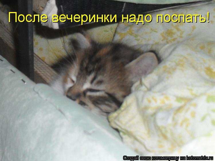 Котоматрица: После вечеринки надо поспать!