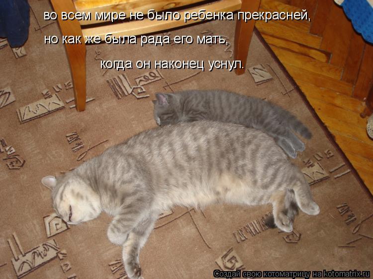 Котоматрица: во всем мире не было ребенка прекрасней, но как же была рада его мать, когда он наконец уснул.