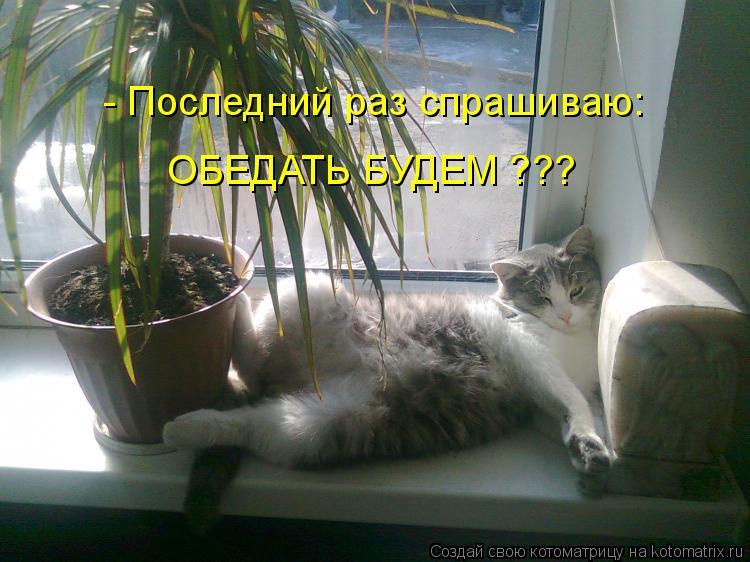 Котоматриця!)))) - Страница 9 1054809