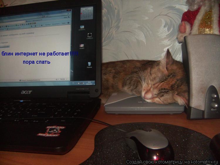 Котоматрица: блин интернет не работает!!!!! пора спать
